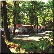 foto Campeggio La Montagnola